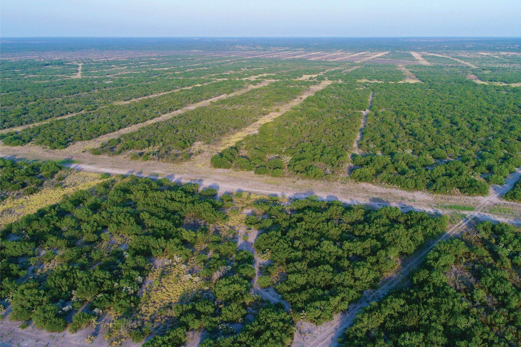 26. Farm and Ranch Properties at 8,988+/- Acres Covenant Ranch, Webb County Freer, Texas 78046 United States