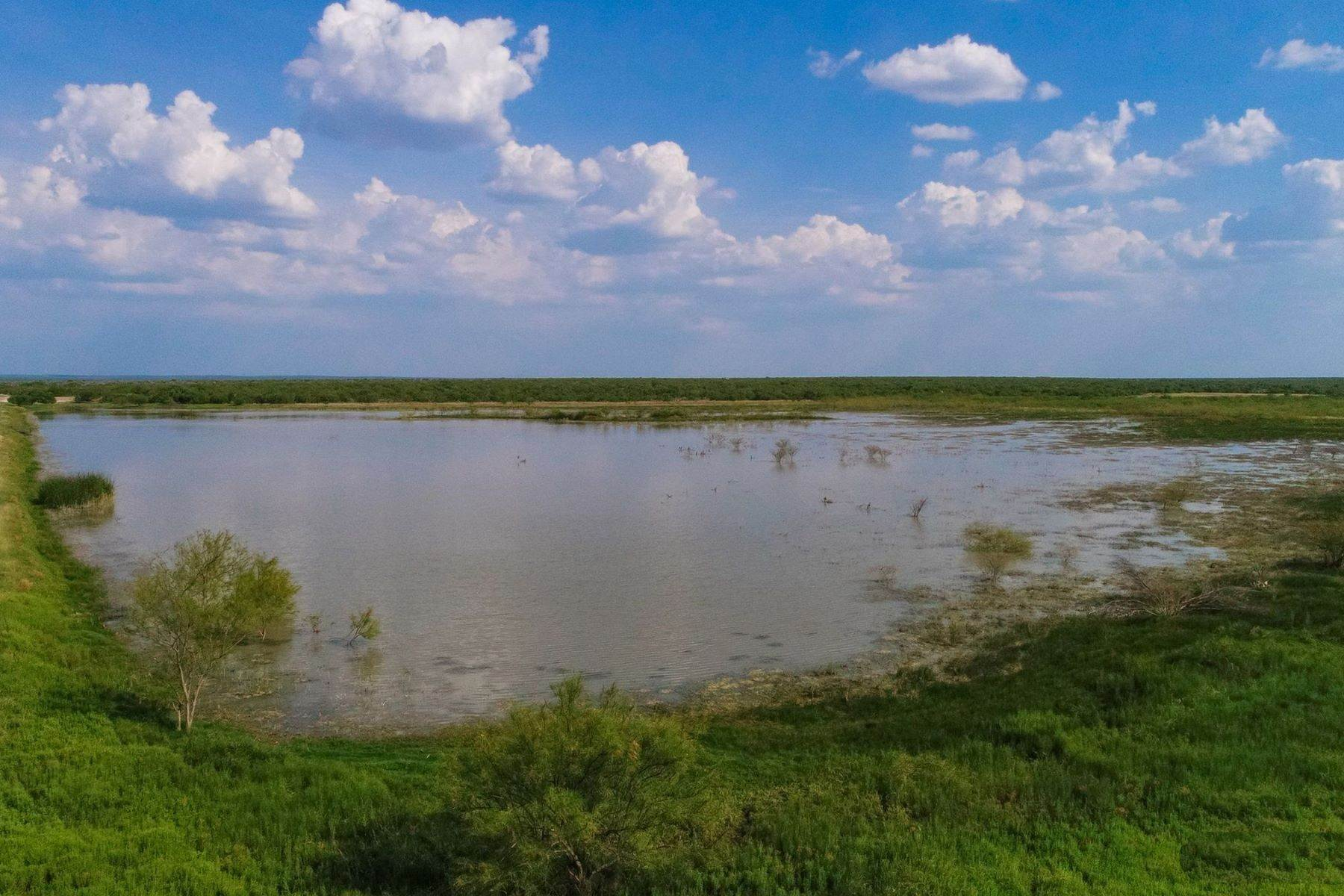 10. Farm and Ranch Properties at 8,988+/- Acres Covenant Ranch, Webb County Freer, Texas 78046 United States