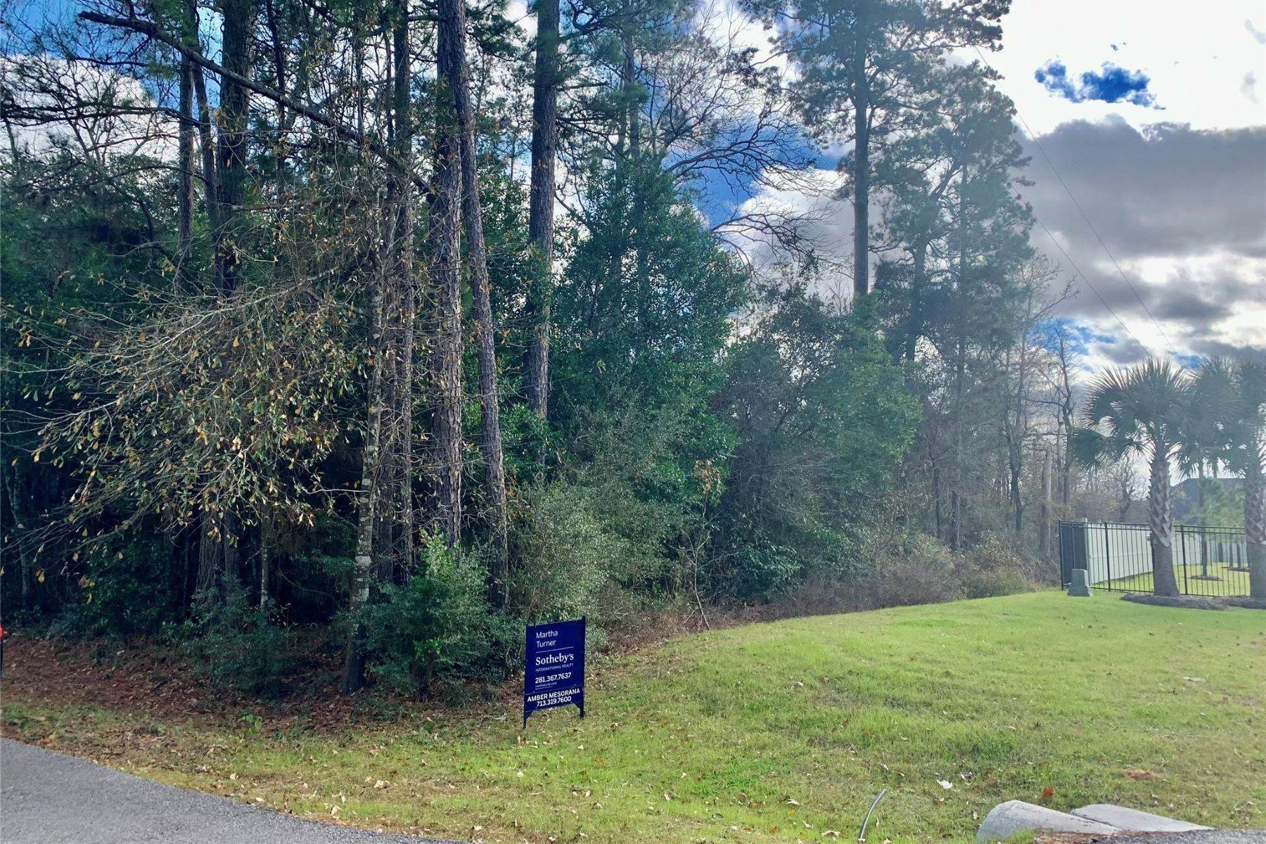 Land for Sale at 10496 Skyridge Drive Conroe, Texas 77868 United States